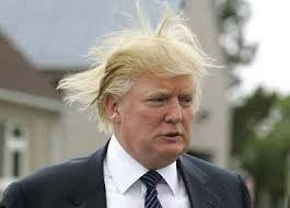 08042017 Trump Hair